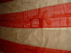 Stripes Oblique