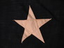 Reverse Star