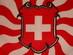 Swiss Army Battallion style Flag -